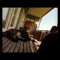 sasha_balkon_zomer12b.jpg